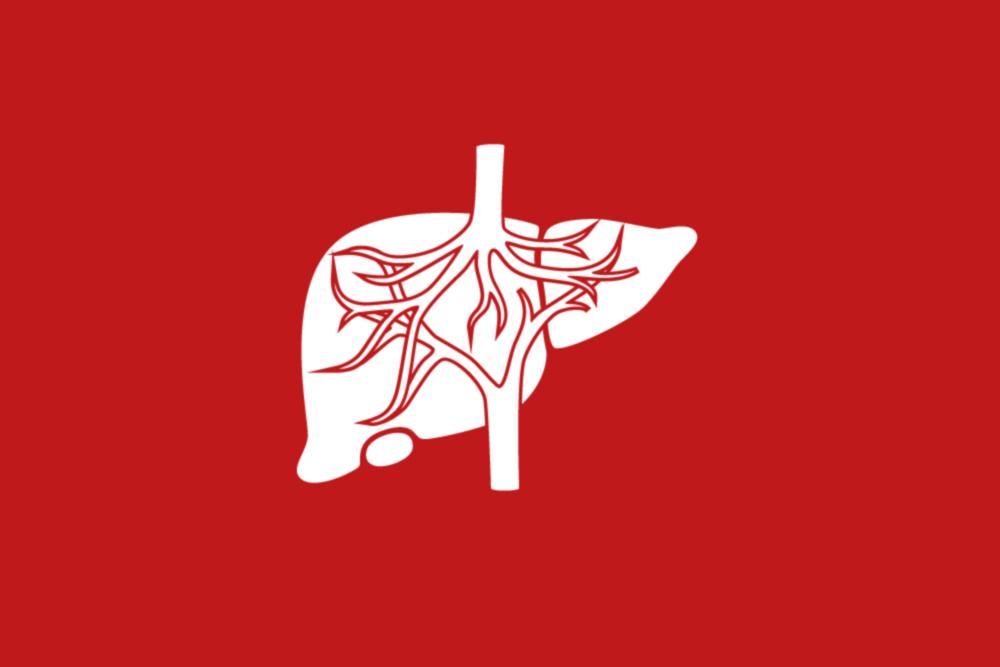 Icon für die Leistung: Bauchspeicheldrüse und Gallenwege